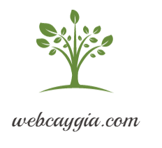 webcaygia.com